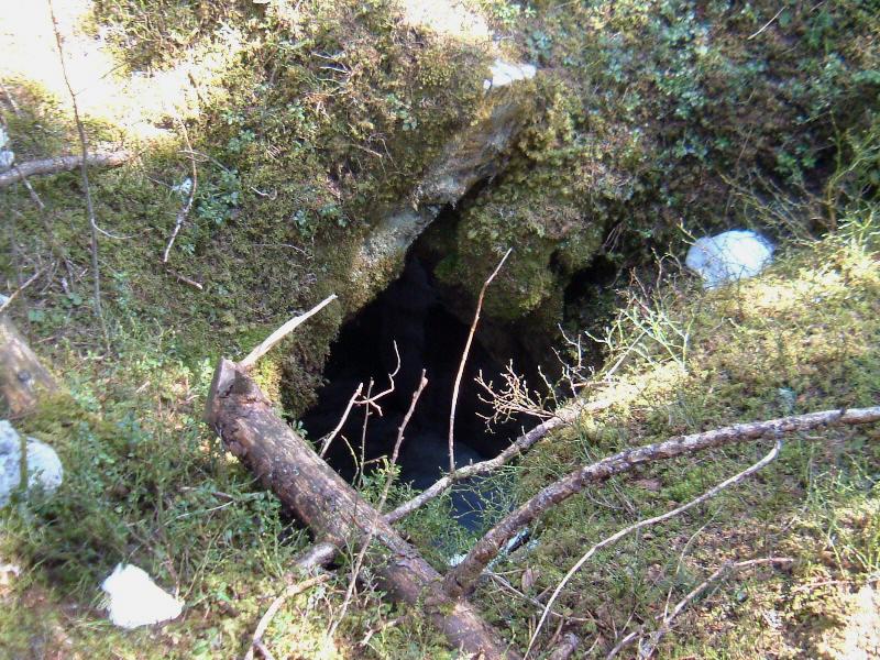 la baume des champignons sur la commune du chenit dans le